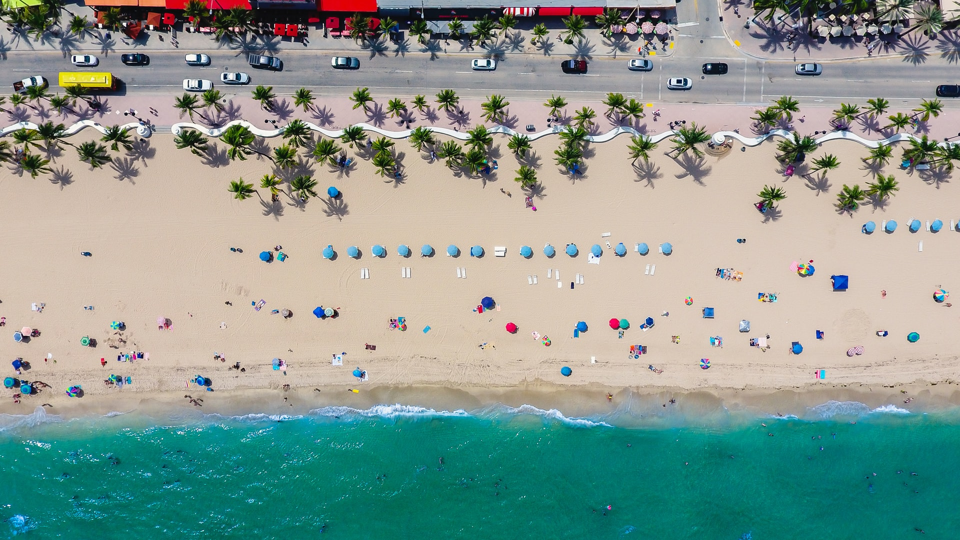 Fort Lauderdale+Lion Country Safari+Palm Beach 1-Day Tour